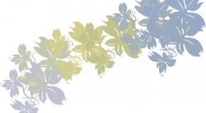 Un cuadro de flores secas