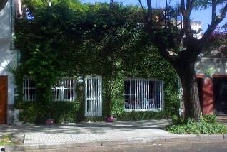 fachada-hiedra